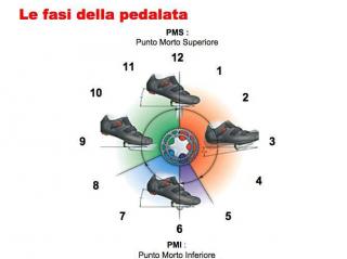 Le fasi della pedalata